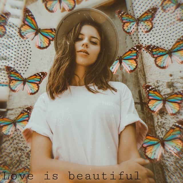 #aesthetic #aesthetics #retro #retroaesthetic #vintage #vintageaesthetic #loveislove #butterfly #butterflies #heypicsart #picsart #film