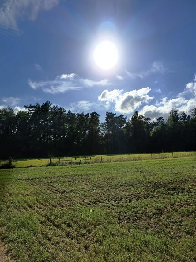 #kinora #sun #sunny #blueskywithclouds #outdoors #field #nature  #freetoedit #loveit