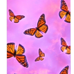 butterfly fly clouds cloud cloudy sky purple background backgrounds overlay overlays sticker tiktok orange polarr aesthetic edit vine videostar backgroundstickers moon wallpaper wallpaperedit black complexedit freetoedit