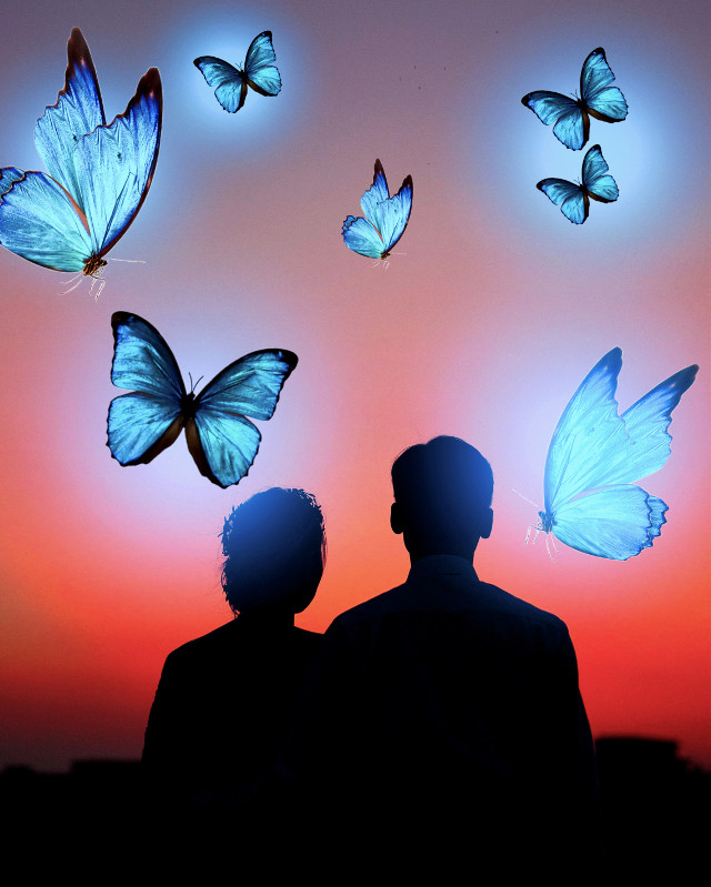 #butterfly #butterlies #couple #bluelights #picsartreplay #freetoedit