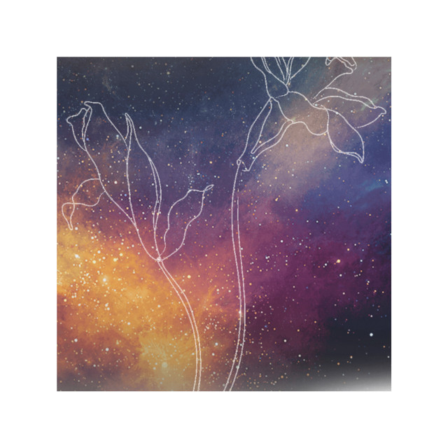 #flower #flowers #galaxy #galaxybackground #background #flowerbackground