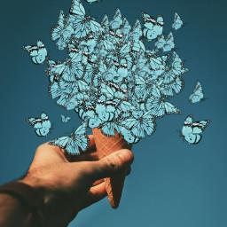 freetoedit icecream icecreamcone butterflies picsarteffects myedit madewithpicsart butterflybrush fx1970