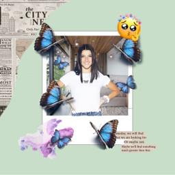 charlidamelio edit fan fanedit butterfly freetoedit