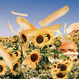 freetoedit huntingparty feedingfrenzy frenchfry sunflower ecgiantfood giantfood