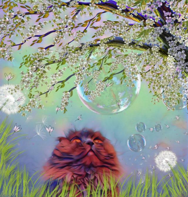 🌷https://picsart.com/i/336254625002201?challenge_id=5f439aee0cf03b262a5c3a11#srcpastelflowers #pastelflowers