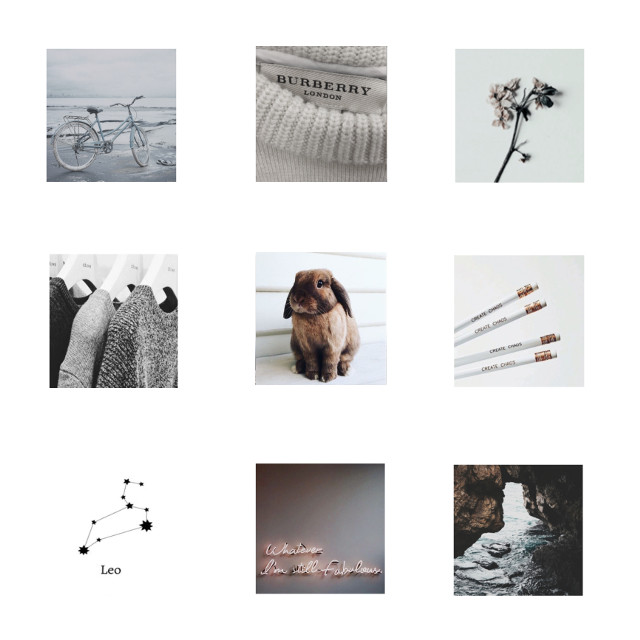 Hi demigods🌻: Leo aesthetic!!  What do u think to my new username?? @daughter_0f_athena  I thought it was in need of a change☺️  -Leah🌻 #leo #aesthetic #zodiac #leozodiac #leoaesthetic #zodiacsign    Taggies:   Avocados 🥑 first found artists: @lorengray2k18 @ginathebeater  @lorenbeech02 @oceanlux @Katnisseverdeen1789 @blossom_games   Peaches 🍑 fav accounts that I follow  @ginathebeater @lorengray2k18 @lizzie_1234567 @orozcosophi56  @bxtchvibes  @sunny_cloudz_ @sweet_outlines  @-sunnydaisy- @horoscope_16 @Katnisseverdeen1789   Pansies 🌺/random but accounts I luv  @_tiktok_ita_american  @katnisseverdeen1789  @halo_outlines  @storybingos @areeni    Raindrops💧/aesthetic accounts  @ginathebeater @oceanlux  @-sunnydaisy- @sunny_cloudz_ @sisteremmaaa @justdoinglife  @lizzie_1234567 @coralwaves  @-windyytulips- @horoscope_16