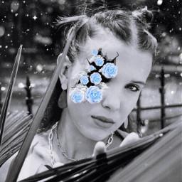 blackandwhite blue blueflower blueflowers flower flowers mills milliebobbybrown wallpaper background rcbreakthroughportrait breakthroughportrait freetoedit
