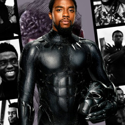 freetoedit chadwickboseman blackpanther marvelstudios cwposter tribute restinpeace