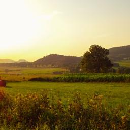 freetoedit meadow landscape nature