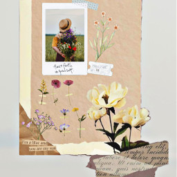 camp aestheticflowers frases flores vintageflowers phrases ircinthefield inthefield freetoedit