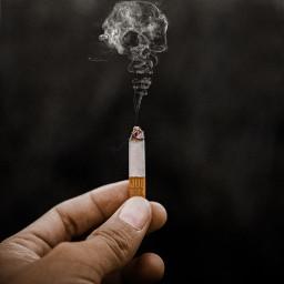 smoke smoking skull cigarette freetoedit