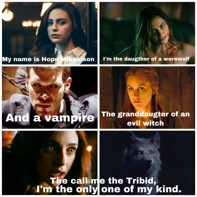 #theoriginals #legacies #hope #hopemikaelson #hopeandreamikaelson #family #niklaus #klaus #niklausmikaelson #klausmikaelson #haleymarshall #haleymikaelson #esthermikaelson #darkmagic #witch #werewolf #vampire #tribid #hybrid