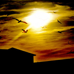 night sunset evening portraitofcolor beautyinnature lowangleview building skyperfection pattern design beautifulview tranquility peaceful natureportrait desktop fullframe myphotography overlaydonewithphotoshopexpress nikond5600