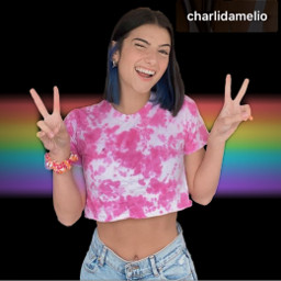 charlidamelio dixiedamelio message instagram story likes followers comments hi camera rainbow tiktok snapchat tagging tag whatsapp home profile picture people photography interesting art music night freetoedit
