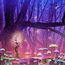 mastershoutout magical mystical forest fantasy myedit madewithpicsart picsarteffects stickeroverlay maskeffect sparklelightbrush freetoedit