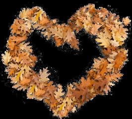 freetoedit leaves листья клен autumn heart сердце