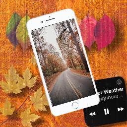 ccautumnmoodboard autumnmoodboard freetoedit