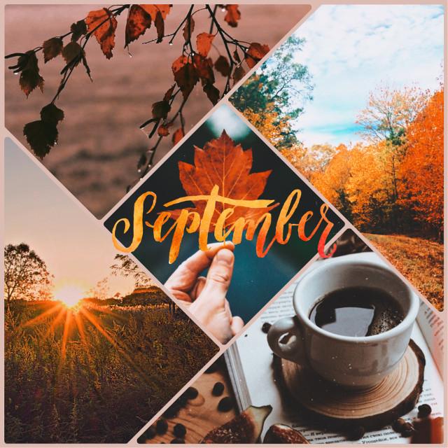 #freetoedit #september #septemberbaby #nature #cofee☕ #coffe #automne #autumn #fall #season #orange #colors #orangecolor #warm #warmth #watmseason #leaves #septemberleaves