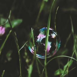 freetoedit photography closeup soapbubbles grass
