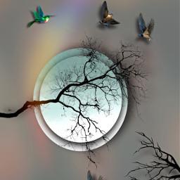 fantasy imagination prismeffect heypicsart makeawesome freetoedit
