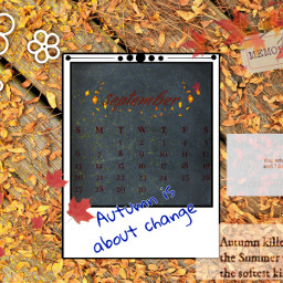 unsplash fall autumn septembershere september septembercalendar orange leaves change autumnisaboutchange blue memories summer interesting nature srcseptembercalendar freetoedit