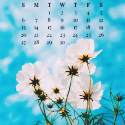 spring nature srcseptembercalendar septembercalendar freetoedit