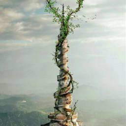 art myart myedit tree nature