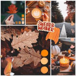 september september2020 autumnmoodboard autumncollage autumn ccautumnmoodboard freetoedit