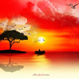 sunset orangesky horizon orangeclouds tree birds colors hue composite
