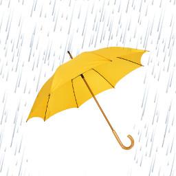 umbrella challenge srcyellowumbrella yellowumbrella freetoedit