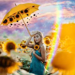 freetoedit unsplash srcyellowumbrella yellowumbrella