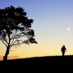 outdoorphotography silhouette hilltop tree walkingalone freetoedit