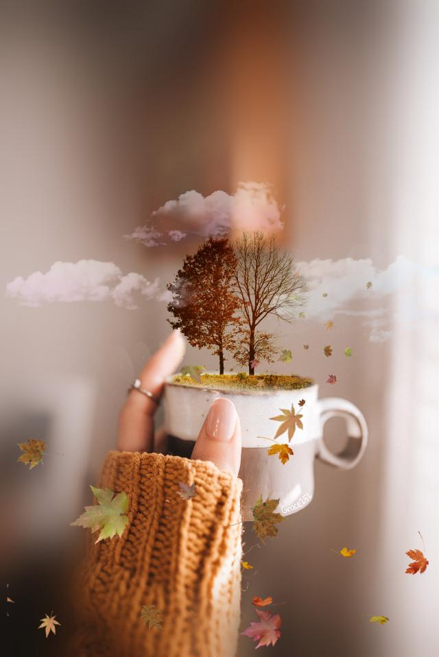 #fall #trees #coffeeart #fallingleaves #clouds #hand #cup Op @freetoedit @amandaarujo5979 @poppypie_23 @armina-pics