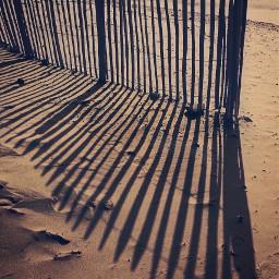 endoftheday athebeach shadowsandlight dunes beachdunes freetoedit