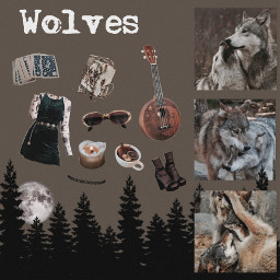 wolf wolfpack moodboard pngstickers aesthetic