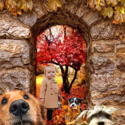 autumn autumnleaves girl dogs animals ccautumnmoodboard freetoedit