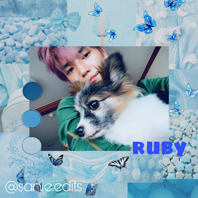 we lost ruby...she took care of taeyong. taeyong, stay strong baby🥺💗💗 💙💙💙 . . . tags:  #blueaesthetic #bluetheme #restinpeace #taeyongnct #leetaeyong #nct  . . . taglist🤍 @jung_wooyoung99  @mariam_137  @atinypresent  @kangmon  @nctinthehouse_05  @taes_shoes  @kirs_hop  @-matryosuga-  @seonghwa_eomma  @honeylemon_cafe  @hongjoongstan  @yeosangstan615  @_wxnpilstea_  @omma_hyunnie_-  @ncityy_07  @sugar-babez  @baby_winter_bear  @lujeno  @nct776  @jisu_ngie-  @some_multi_shet  . . . dm me to be added/removed from taglist✨