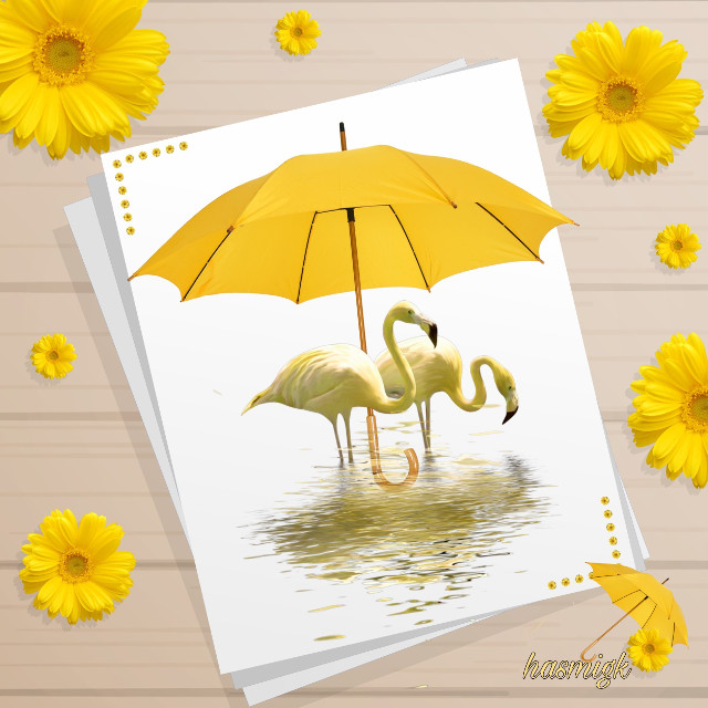 #yellow #umbrella #flowers#paper #flamingo #water #frame #background #editedwithpicsart #picsart #heypicsart