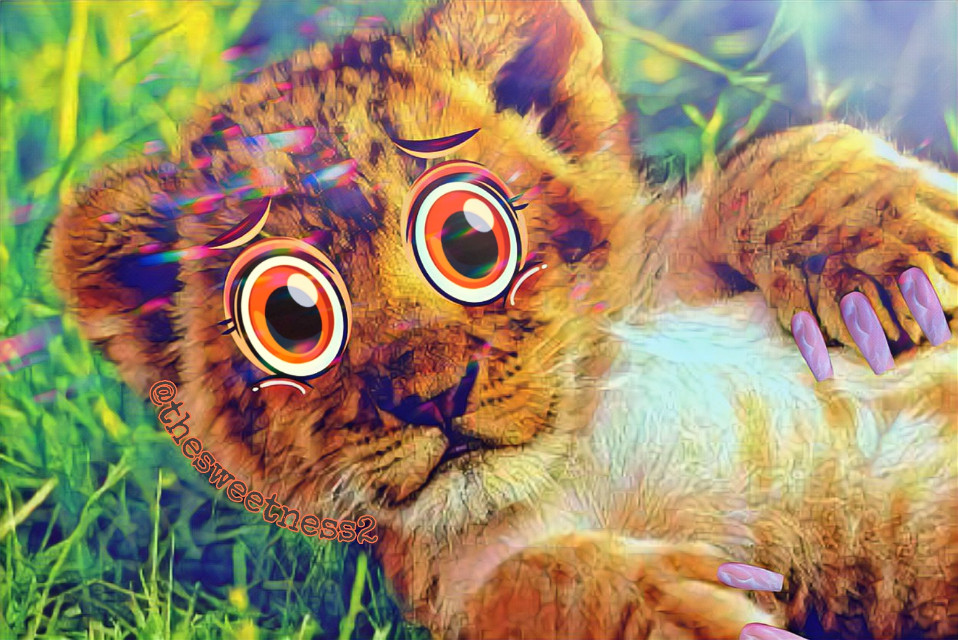 #Lion #Cub #LionCub #cute #grass #play #Cartoon #cartooneyes #challenge #carton