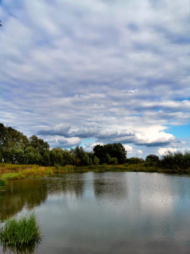 #landscape #lake #reflection #trees #sky #clouds #beautifulnature #beautifulday #myphoto #myclick #summer #summertime