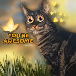 youreawesome freetoedit eccartoonifiedanimals cartoonifiedanimals