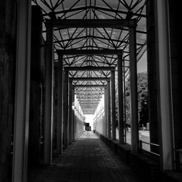 freetoedit vanishingpoint frommypointofview blackandwhite travel