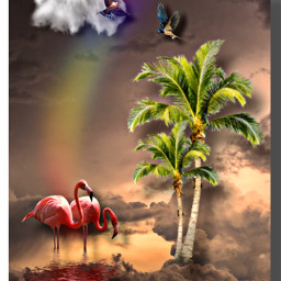 makeawesome heypicsart tropical fantasy flamingo colorful palm summervibes imagination interesting creativity diversity freetoedit
