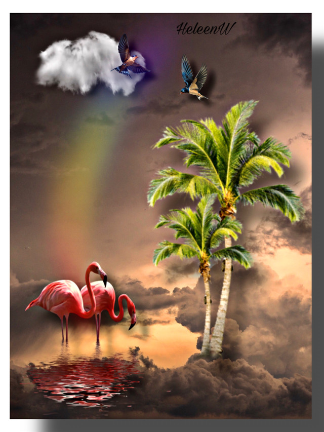 #makeawesome #heypicsart #tropical #fantasy #flamingo #colorful #palm #summervibes #imagination #interesting #creativity #diversity #freetoedit