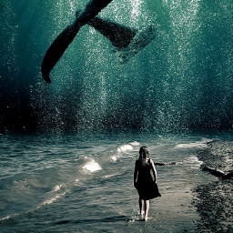 photomanipulation surreal underwater imagination creativity blending madewithpicsart freetoedit