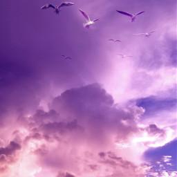 nature clouds pink curvestool adjusttool myphotography naturephotograpy freetoedit