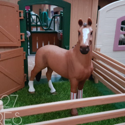 schleich picture modelhorse stable stall hannoveraner freetoedit