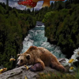 do bear sleeping bee attack river mushrooms treestumb daisyflower freetoedit