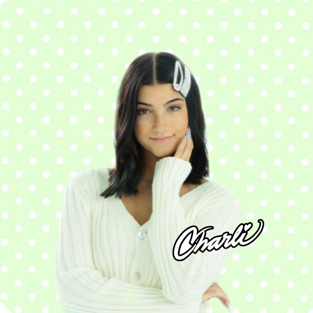 Soft charli damelio fan page profile picture!