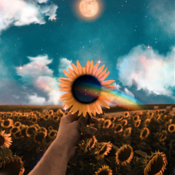 sunflowers rainbow sky moon clouds heaven sunflower glitter shine bright myedit awesome colorful madewithpicsart picsartpicks pickme papicks amazing fantasy background galaxy sweet inspiration creative freetoedit ircsunflowerinmyhand sunflowerinmyhand